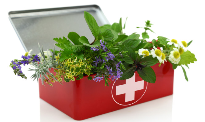 http://www.iatropedia.gr/wp-content/uploads/2015/07/herbal-first-aid-kit-666x399.jpg