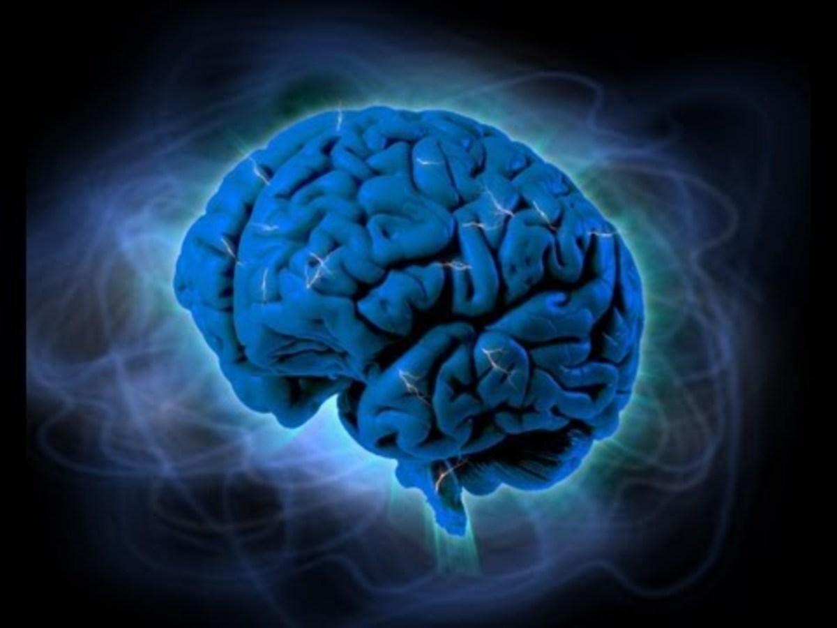 10 πράγματα για τον εγκέφαλο που δεν ξέρετε – ΒΙΝΤΕΟ