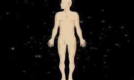 Ανθρώπινο σώμα-μια τέλεια μηχανή BINTEO