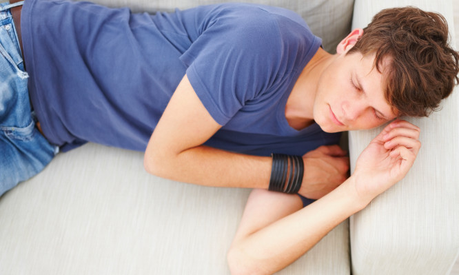 Handsome young guy sleeping on sofa in home