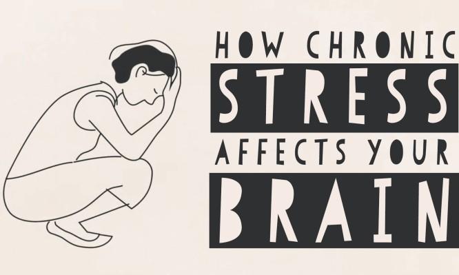 Δείτε τι προκαλεί το στρες στον εγκέφαλό σας (ΒΙΝΤΕΟ)