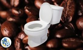 Επιτέλους απαντήθηκε: Γιατί ο καφές διεγείρει την… κίνηση του εντέρου (ΒΙΝΤΕΟ)