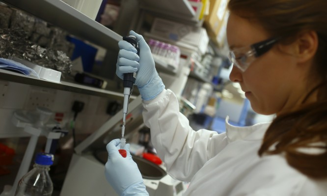 Research assistant Georgina Bowyer works on a vaccine for Ebola at The Jenner Institute in Oxford