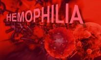 aimorrofilia b