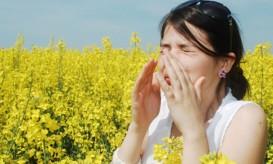 αλλεργιες