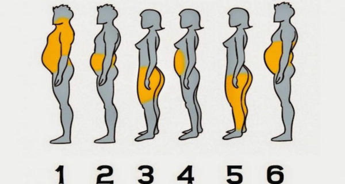 λίπος