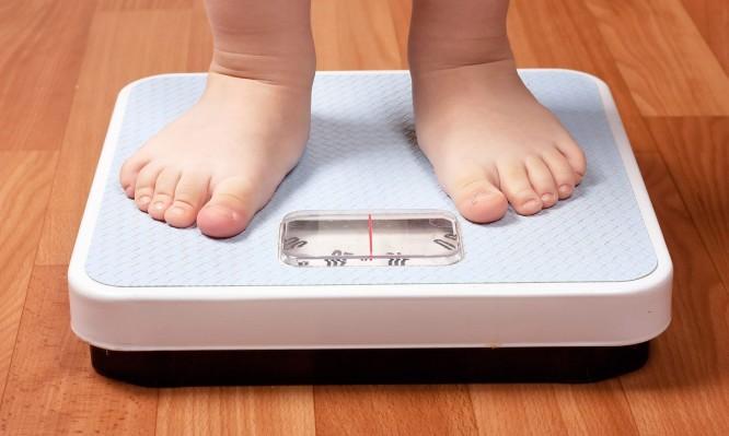 παχύσαρκο