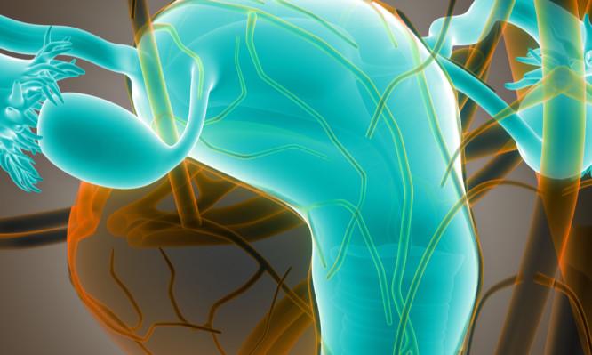 πρόωρη ωοθηκική ανεπάρκεια