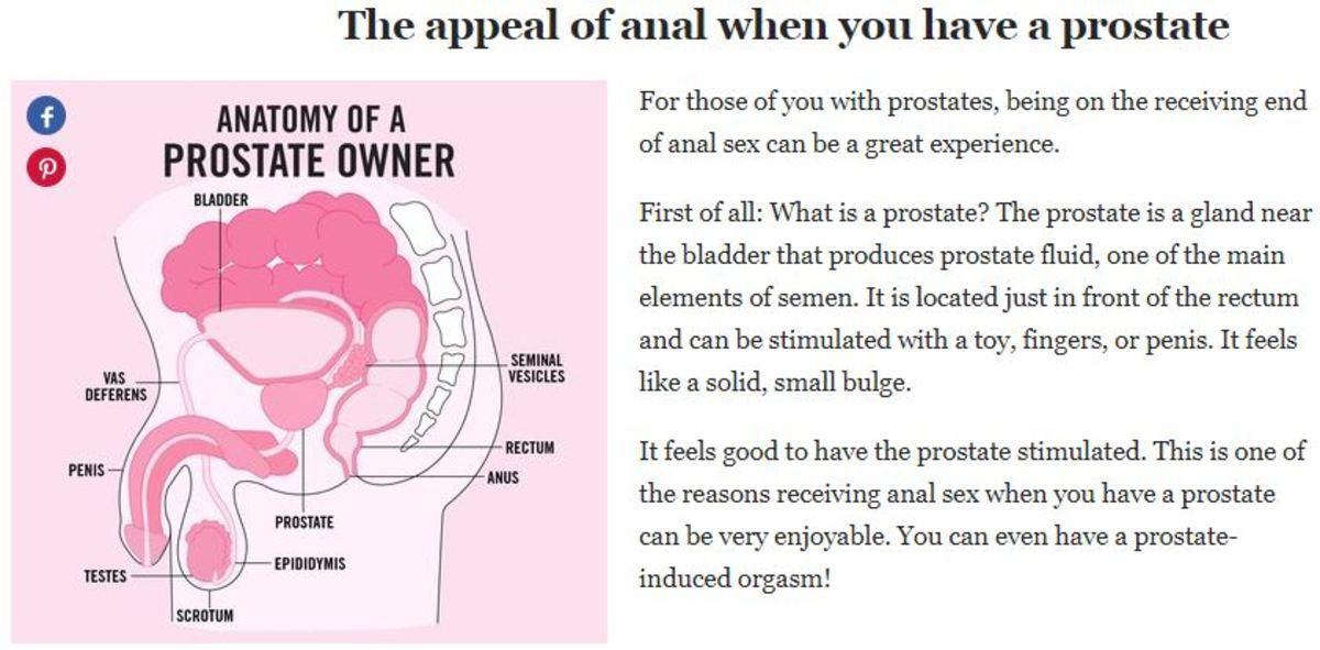 πρωκτικό σεξ για αρχάριους πρωκτικό καρτούν βίντεο σεξ