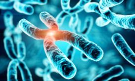 γενετικές μεταλλάξεις