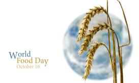 Παγκόσμια Ημέρα Σίτισης
