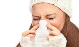 gripi_3