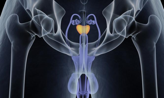 δωρεάν τραβεστί όργιο πορνό