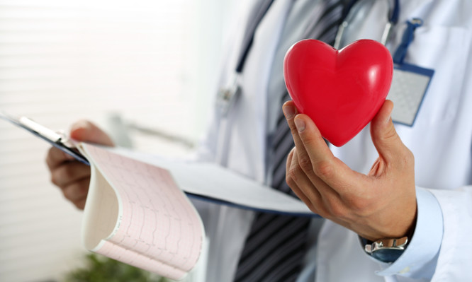 Male medicine doctor hands holding red toy heart and cardiogram chart on clipboard closeup. Cardio therapeutist, physician make cardiac physical, heart rate measure, arrhythmia concept