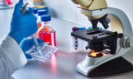 Scientist pipetting research samples by the microscope