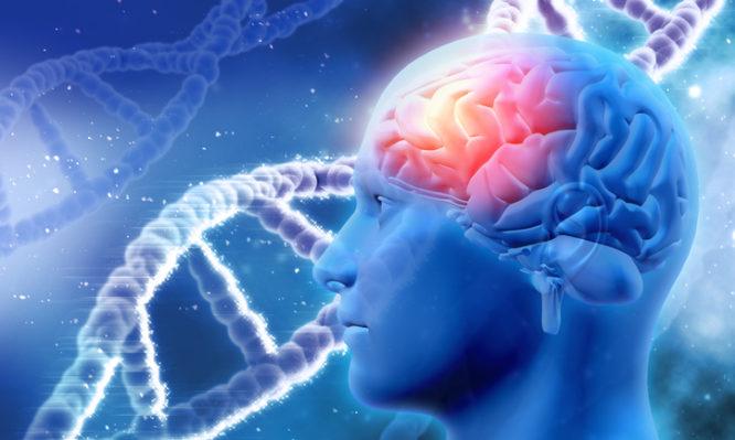 νόσος Αλτσχάιμερ