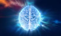 ενηλικίωση εγκέφαλος