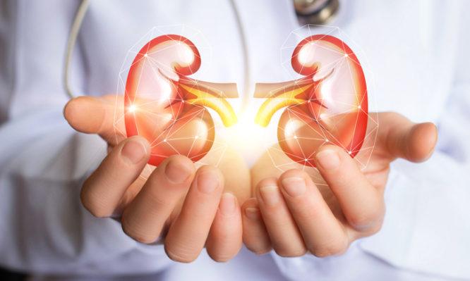 καρκίνος του νεφρού νεφρεκτομή