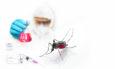 έντομα βακτήρια νοσοκομεία