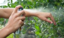 εντομοαπωθητικά