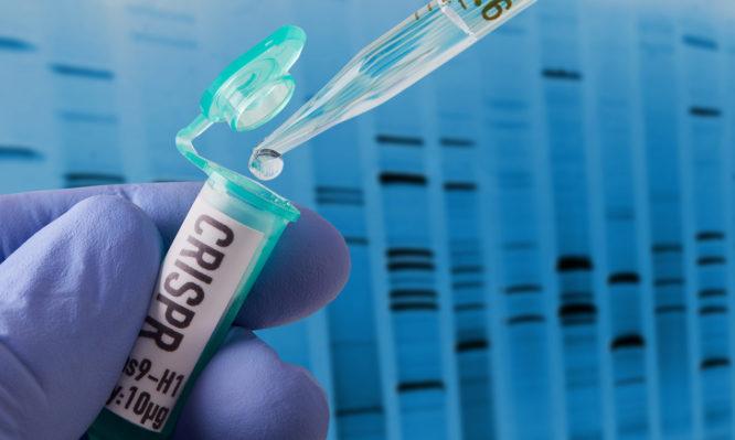 γενετικά τροποποιημένα μωρά