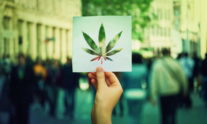 μαριχουάνα