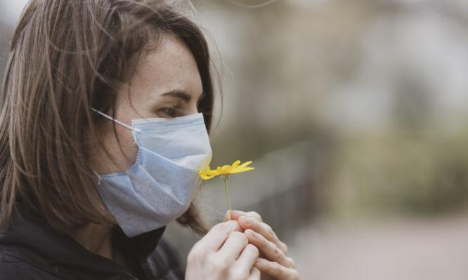 όσφρησης