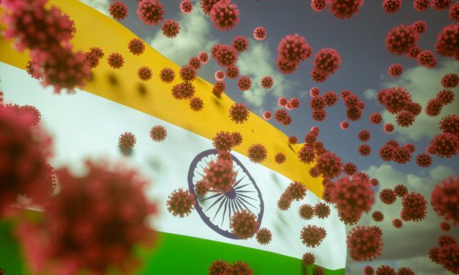 ινδική μετάλλαξη